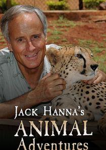 Jack Hannas Animal Adventures