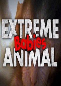 Extreme Animal Babies