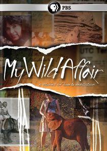My Wild Affair