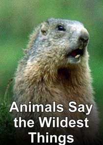 Animals Say the Wildest Things