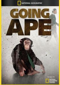 Going Ape