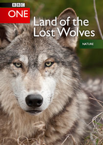 Land of the Lost Wolves