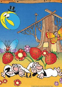 Сказки мхов и папоротников