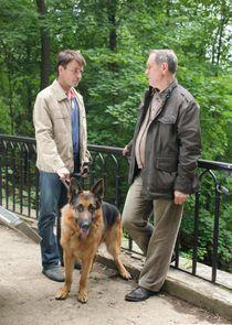 Лорд. Пёс-полицейский