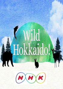Wild Hokkaido!