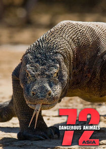 72 Dangerous Animals: Asia-35616
