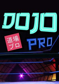 Dojo Pro