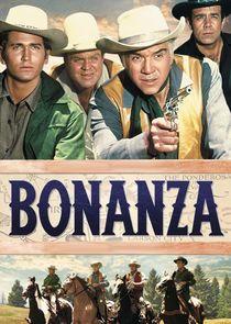 Бонанца-4192