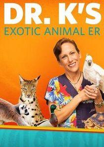 Dr. Ks Exotic Animal ER: Gloves Off!