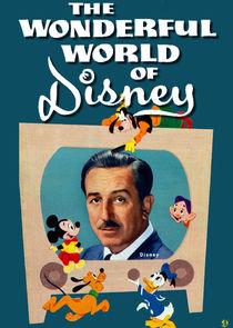 The Wonderful World of Disney-21484