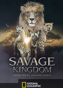 Savage Kingdom-18957