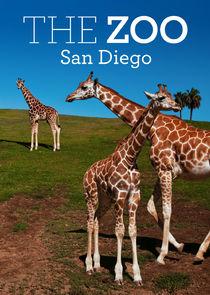 The Zoo San Diego