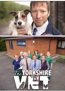 The Yorkshire Vet-13960
