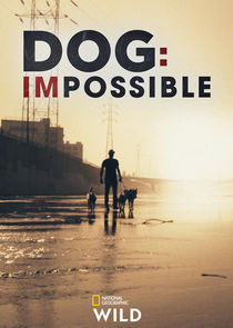 Dog: Impossible-42000