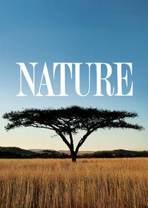 Природа-3185