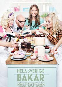 Hela Sverige bakar-30517