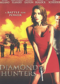 The Diamond Hunters-31628