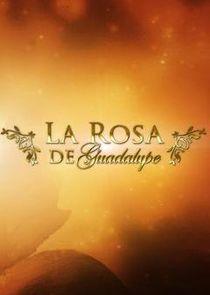La rosa de Guadalupe-11317