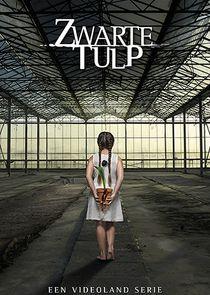 Zwarte Tulp-1720