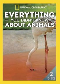 Everything You Didnt Know About Animals