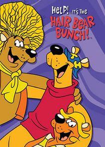 Help! Its the Hair Bear Bunch