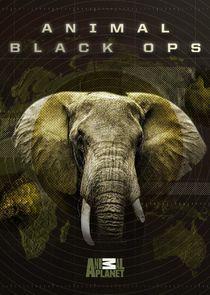 Animal Black Ops