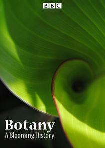 Botany: A Blooming History