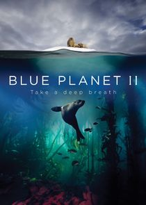 Голубая планета 2-23981