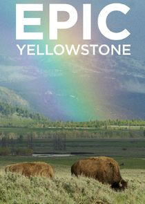 Epic Yellowstone