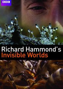 Невидимые миры