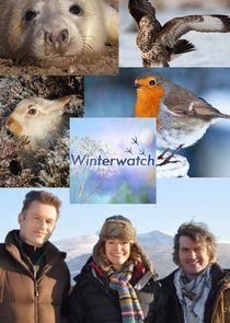 Winterwatch-4987