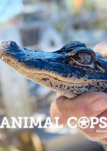 Animal Cops: Miami