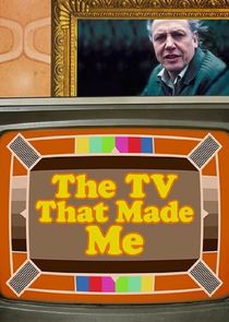 The TV That Made Me
