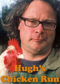 Hugh's Chicken Run