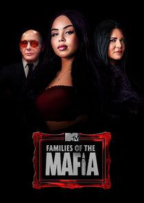 Families of the Mafia-45506