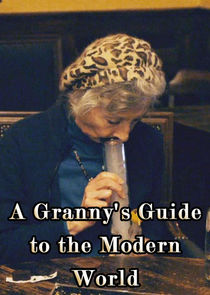 A Grannys Guide to the Modern World-18278