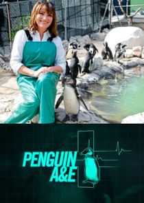 Penguin A&E with Lorraine Kelly