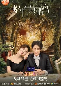 Symphony's Romance