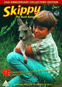 Skippy, das Känguruh-8675
