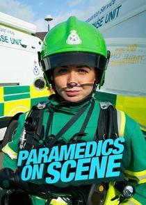Paramedics On Scene-43577