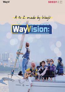 WayVision-48958
