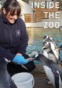 Inside the Zoo-49028