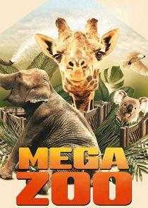 Mega Zoo-49137