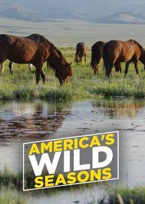 America's Wild Seasons