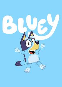 Bluey-40186