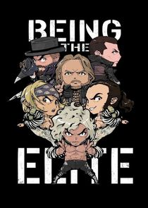 Being The Elite-44955
