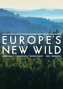 Europe's New Wild-51498