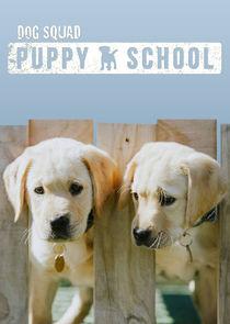 Dog Squad: Puppy School