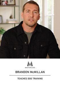 MasterClass: Brandon McMillan Teaches Dog Training