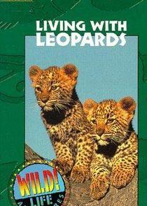 Wild Life Adventures